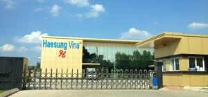 Công ty Haesung Vina